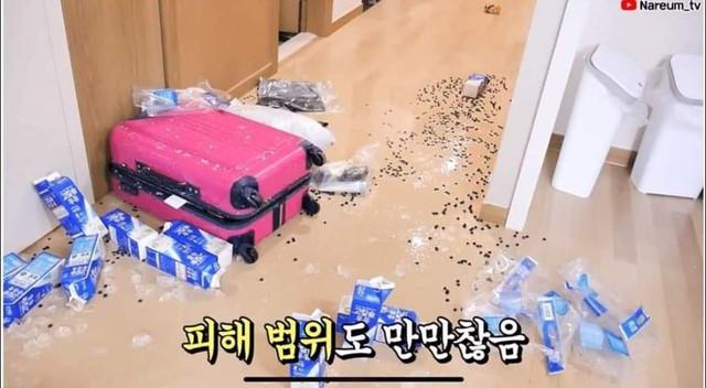 Học bà Tân Vlog làm trà sữa siêu to khổng lồ, nữ Youtuber người Hàn nhận cái kết đắng ngắt - Ảnh 5.