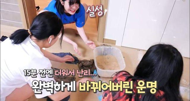 Học bà Tân Vlog làm trà sữa siêu to khổng lồ, nữ Youtuber người Hàn nhận cái kết đắng ngắt - Ảnh 6.