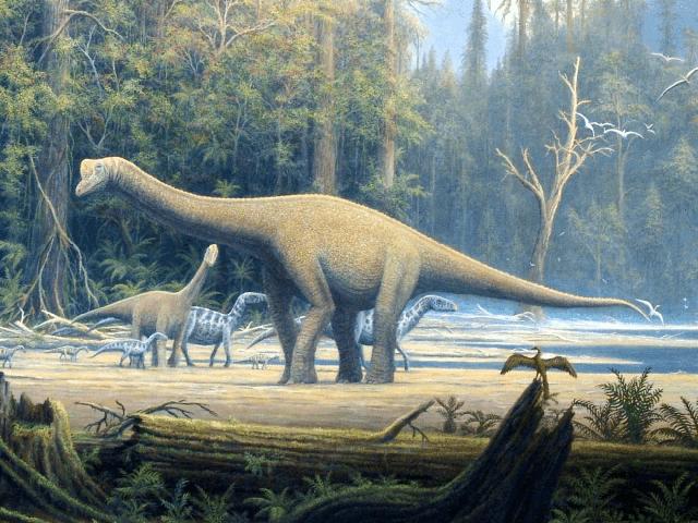 Top 5 điều thú vị mà có thể bạn chưa biết về khủng long Sauropod - Ảnh 2.