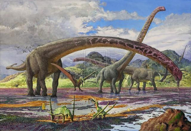 Top 5 điều thú vị mà có thể bạn chưa biết về khủng long Sauropod - Ảnh 1.