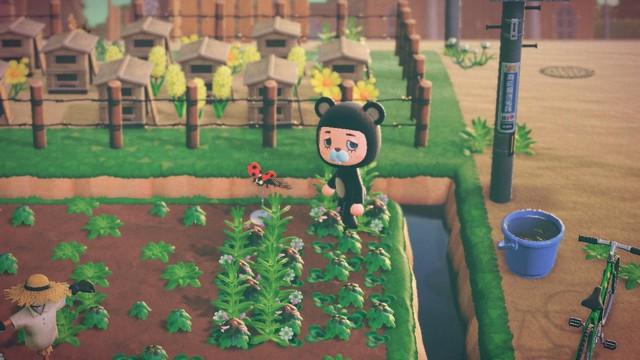 Cộng đồng Animal Crossing xôn xao vì những kiệt tác quá đẹp do chính game thủ tạo ra - Ảnh 11.