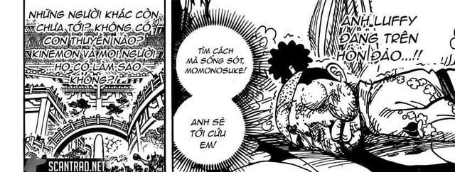 One Piece: Kanjuro thực chất đã phản bội Orochi, Momonosuke đang bị bắt giữ chỉ là hình vẽ do năng lực trái ác quỷ tạo ra? - Ảnh 3.