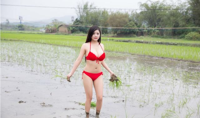 Mặc bikini đi trồng lúa, bón phân, cô nàng hot girl nhận muôn vàn chỉ trích từ phía cộng đồng mạng - Ảnh 4.