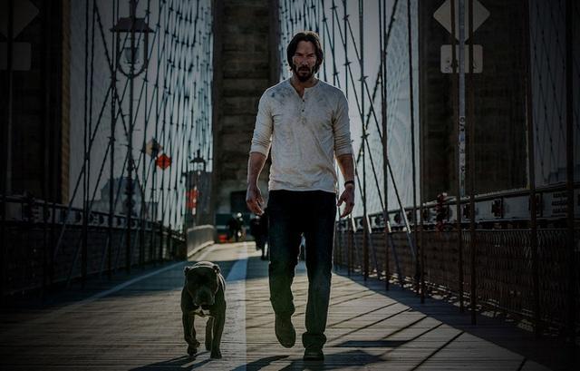 Nhây như Keanu Reeves: Rõ ràng phim có tên khác nhưng cứ thích gọi là John Wick, buộc nhà sản xuất phải đổi luôn tựa đề của cả series - Ảnh 1.
