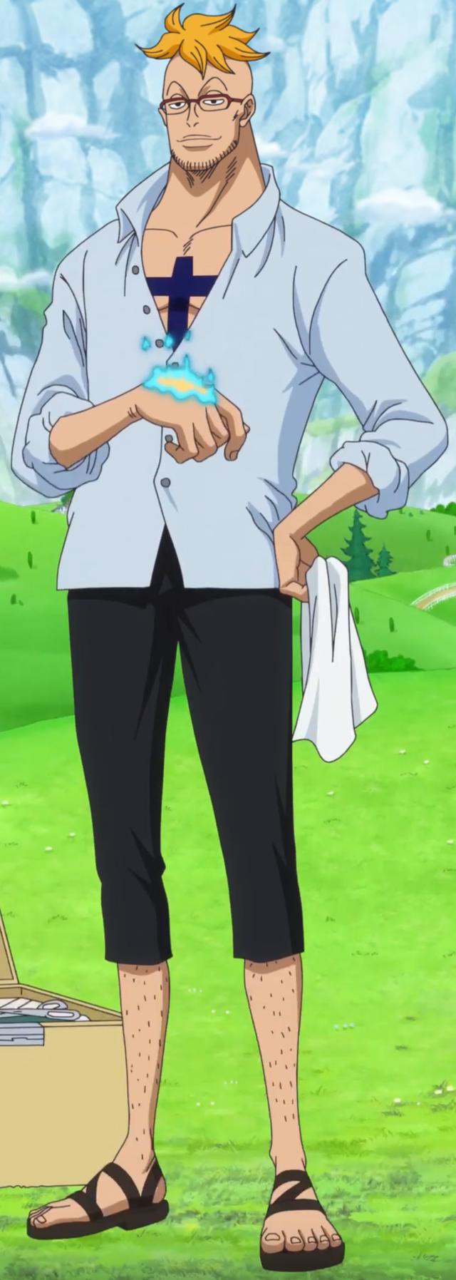 One Piece: Dù Phượng hoàng Marco rất mạnh nhưng fan lo sợ anh cũng sẽ bị dìm vì mái tóc màu vàng? - Ảnh 3.