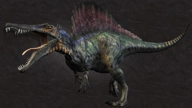 Những sinh vật siêu to khổng lồ từng tồn tại tồn tại trên Trái Đất từ trước tới nay - Ảnh 7.