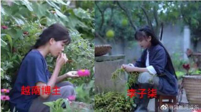 Cộng đồng mạng Trung Quốc dậy sóng trước kênh Youtube Việt nghi bắt chước Lý Tiểu Thất, lọt hẳn top 1 tìm kiếm trên Weibo - Ảnh 5.