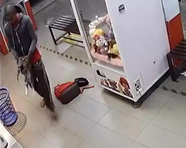 Phát hiện xác 3 con mèo trong máy giặt công cộng, camera soi ra hành động vô nhân đạo của gã đàn ông và cái giá phải trả thích đáng - Ảnh 3.