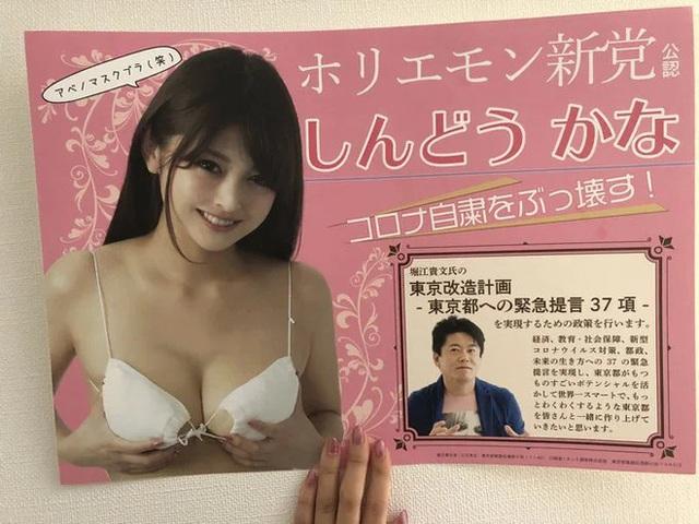 Nữ ứng viên Nhật Bản dùng khẩu trang thay áo ngực để quảng bá cho chiến dịch tranh cử - Ảnh 3.