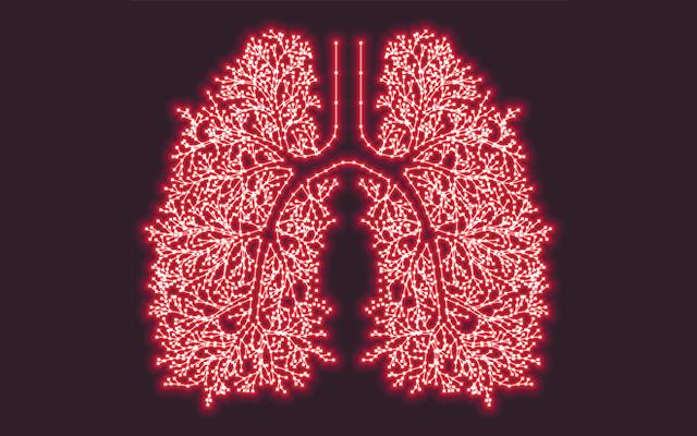 Bí ẩn bên trong cơ thể người: Tuổi thọ của nội tạng và tuổi thọ chúng ta hóa ra không nhất thiết là một! - Ảnh 4.