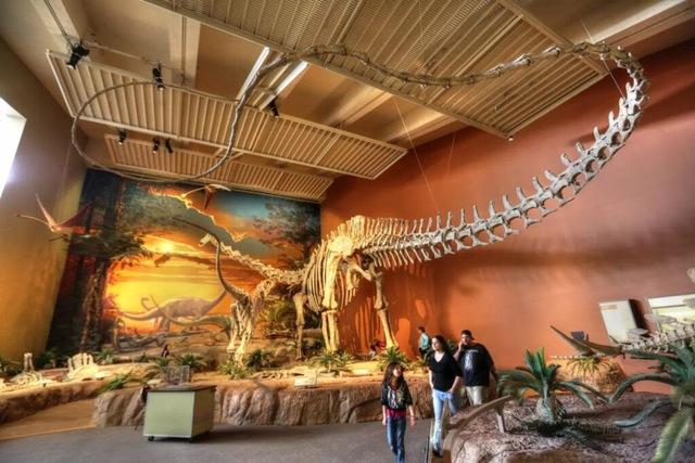 Top 10 loài khủng long nguy hiểm nhất thời tiền sử, khủng long bạo chúa vẫn còn hiền chán - Ảnh 8.