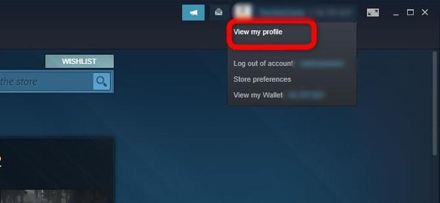 Hướng dẫn định giá tài khoản Steam để game thủ biết mình đã chi bao nhiêu tiền mua game - Ảnh 6.
