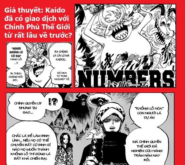 Giả thuyết One Piece: Kaido và Chính phủ Thế giới đã có một thương vụ hợp tác sản xuất trái ác quỷ nhân tạo hệ Zoan? - Ảnh 1.