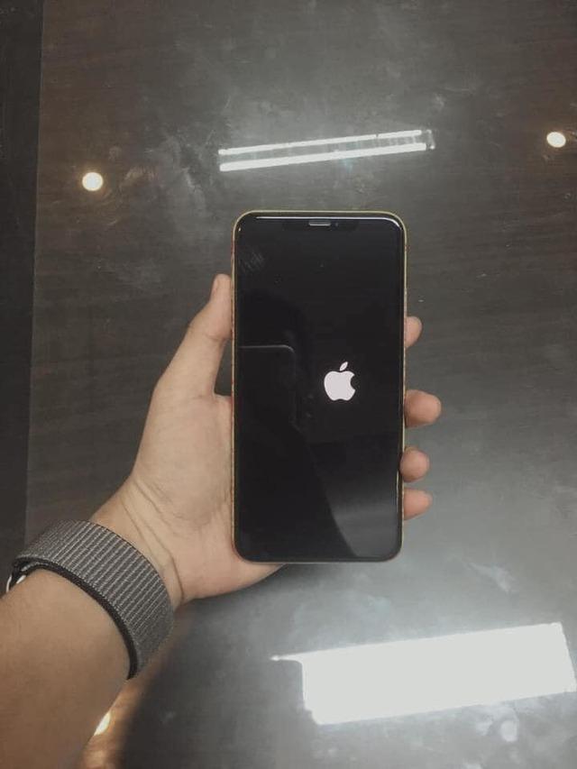 Cập nhật IOS 14, fan Iphone đua nhau báo lỗi, hết táo lệch lại tới màn hình bật mãi không lên - Ảnh 2.