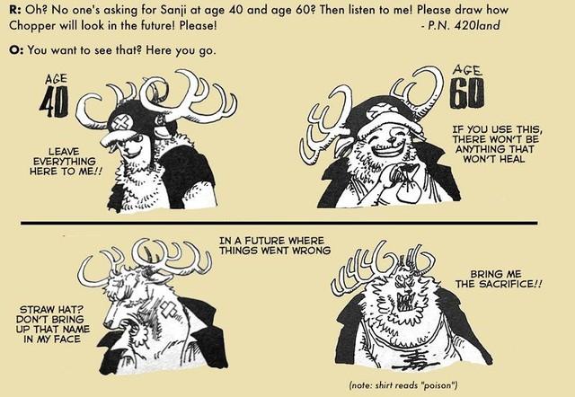 One Piece: Phiên bản về già của 7 nhân vật nhiều fan yêu thích do chính tay Oda vẽ - Ảnh 7.