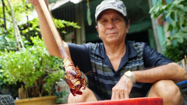 Săn tiểu cường bằng tay không, người đàn ông ở Sài Gòn kiếm tiền triệu để nuôi 4 con - Ảnh 1.