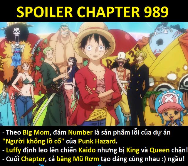 One Piece 989: Là một fan cứng, bạn có háo hức chờ đợi cảnh cả băng Mũ Rơm tập hợp sẵn sàng chiến đấu hay không? - Ảnh 1.