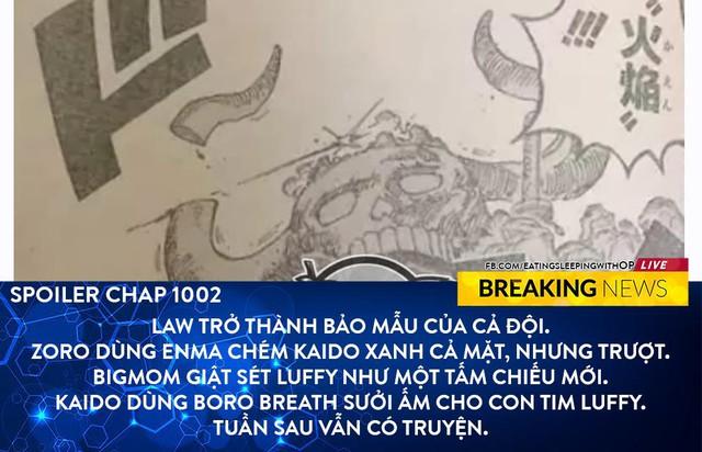 Spoil đầy đủ One Piece chap 102: Siêu Tân Tinh đồng loạt tấn công Kaido, Tứ Hoàng bị cắt xuyên qua cơ thể - Ảnh 3.