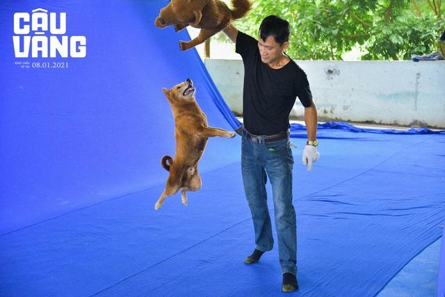 Cậu Vàng - Chú chó đảm nhận vai chính đầu tiên trên phim điện ảnh Việt Nam Photo-1-1609754363123615977978