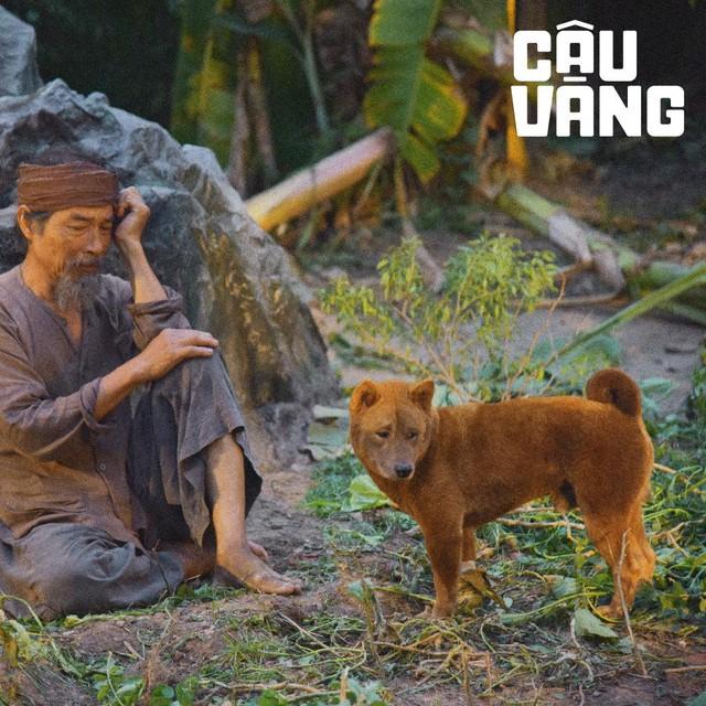Cậu Vàng - Chú chó đảm nhận vai chính đầu tiên trên phim điện ảnh Việt Nam Photo-5-16097543646881073125097