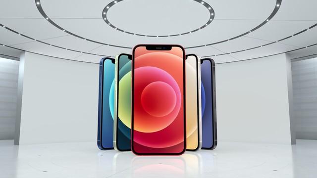 Ham iPhone 12 giảm giá trên sàn thương mại điện tử nổi tiếng, chàng trai khóc nấc khi nhận được hàng - Ảnh 1.