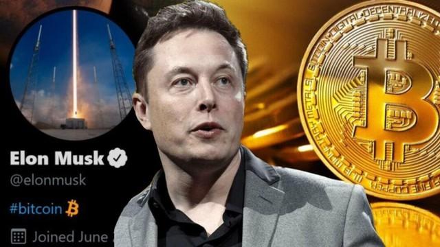 Bill Gates cảnh báo: Nếu không giàu như Elon Musk thì đừng dại đổ tiền vào Bitcoin - Ảnh 3.