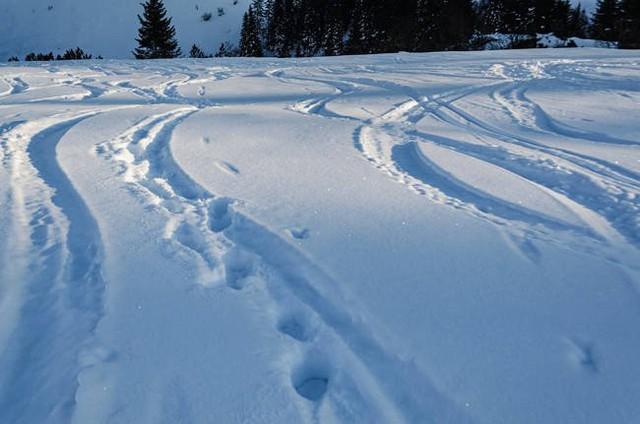 Không thể ra khỏi nhà vì tuyết rơi, người đàn ông nhanh trí tự thú tội sát nhân để cảnh sát đến dọn đường giúp - Ảnh 2.