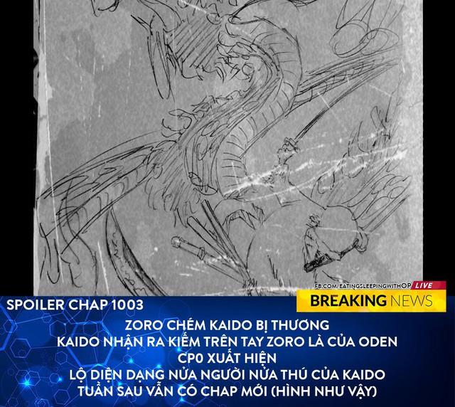 Spoil nhanh One Piece 1003: Zoro chém Kaido bị thương, Tứ Hoàng hoá thành dạng nửa người nửa thú - Ảnh 2.