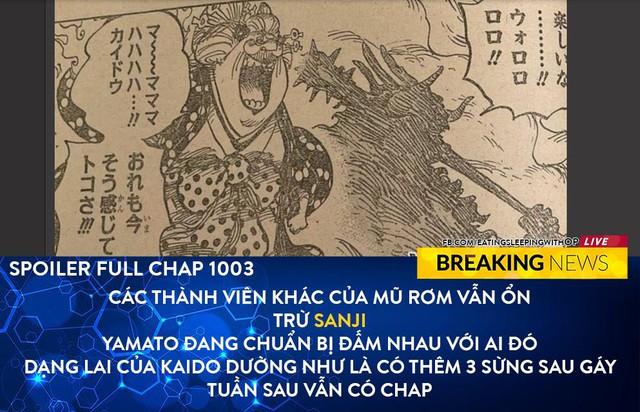 Spoil đầy đủ One Piece chương 1003: Hình dạng nửa người nửa thú của Kaido có thêm 3 sừng? - Ảnh 1.