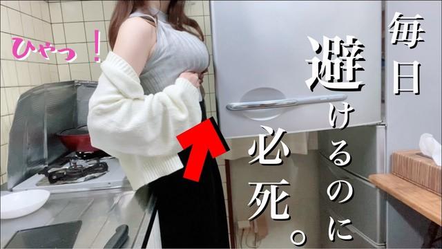 Nổi tiếng với các clip khoe ngực dạy nấu ăn, nữ YouTuber bất ngờ bị tẩy chay, bỏ subs chỉ vì lộ mặt thật - Ảnh 7.