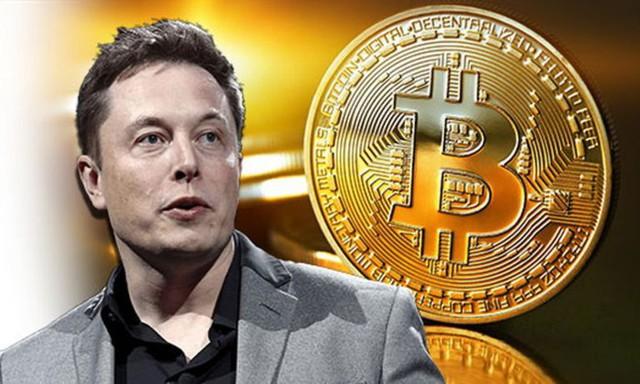 """Bitcoin phá mốc cao nhất lịch sử, Elon Musk """"bơi"""" trong tiền - Ảnh 1."""