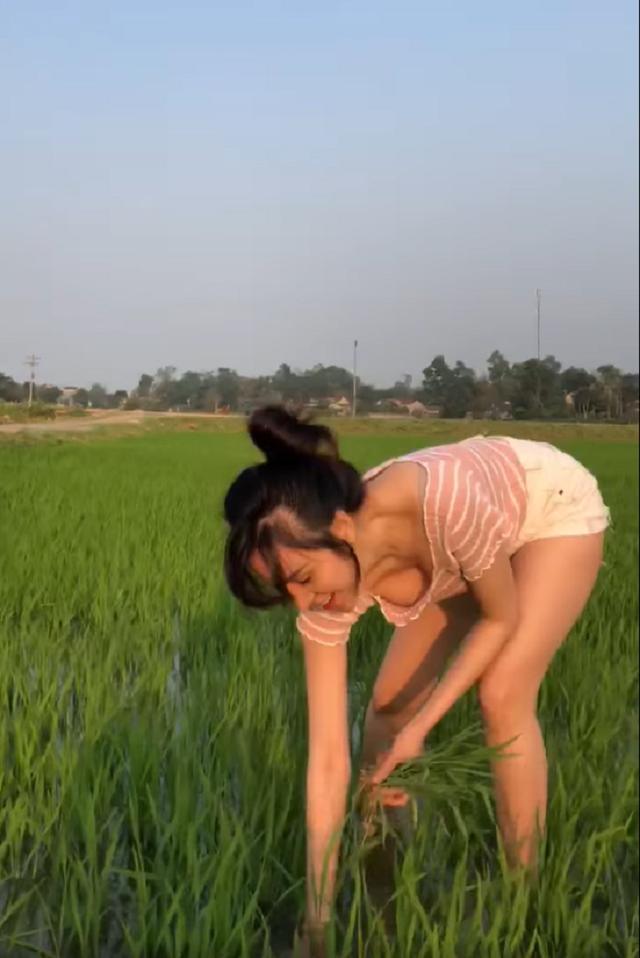Hớ hênh vòng một gợi cảm khi đi thu hoạch lúa, bà Tưng bất ngờ gặp vô số chỉ trích - Ảnh 2.