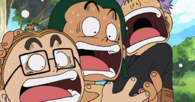 One Piece: 6 thành viên của băng Mũ Rơm đã từng gia nhập băng hải tặc khác - Ảnh 1.