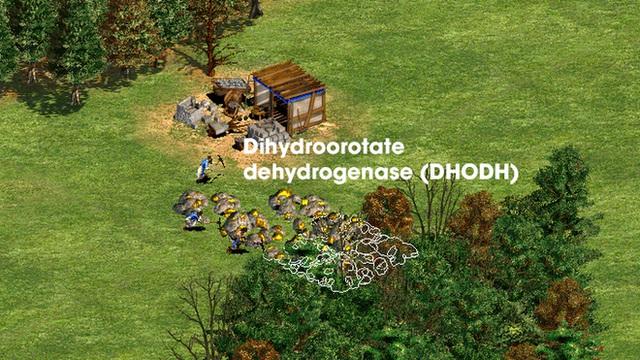 Hiểu cơ chế hoạt động của 5 dòng thuốc COVID-19, từ góc nhìn thú vị của trò chơi Đế Chế - Ảnh 8.