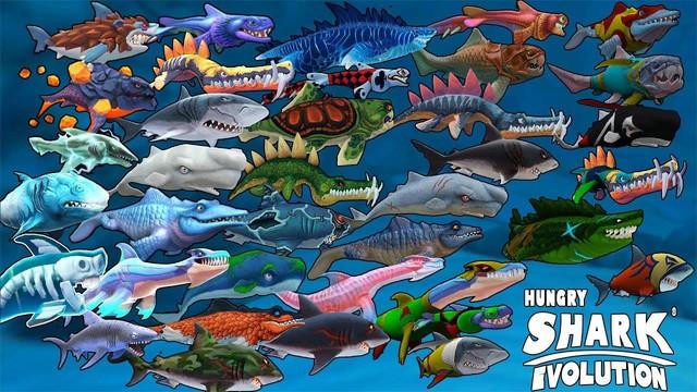 Lý do nào khiến những chú cá mập vẫn còn gây được sức hút sau gần 1 thập kỷ? - Ảnh 3.