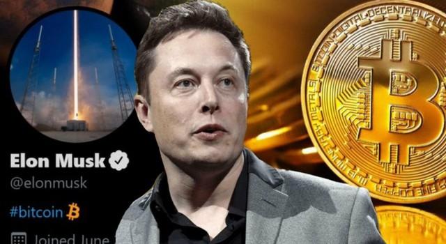 Elon Musk viết 8 chữ, Bitcoin lập tức quay đầu tăng điểm thần kỳ - Ảnh 1.