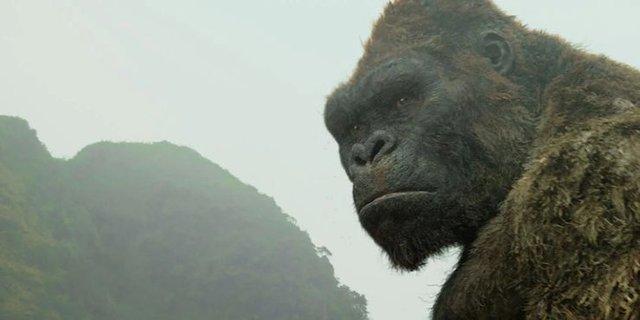Godzilla Vs. Kong: Những điểm mạnh và yếu chưa từng được tiết lộ Kong-skull-island-16172503473071412606559