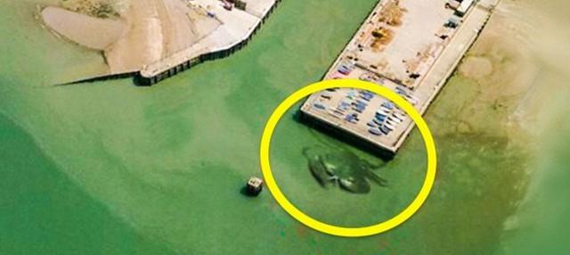 14 hình ảnh lạ lùng tìm thấy trên Google Maps khiến bạn hoang mang 0014