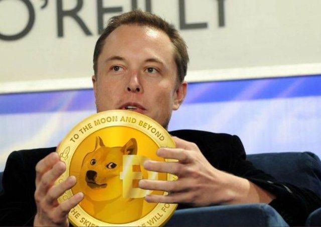 Elon Musk đăng 1 bức biếm họa, tiền ảo Dogecoin tăng 248% chỉ sau 1 ngày - Ảnh 2.