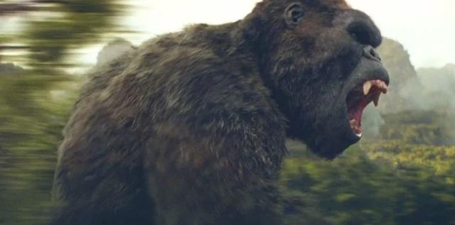 Những vấn đề chưa có lời giải trong Godzilla vs. Kong: Lỗ hổng kịch bản hay tiền đề cho các dự án tương lai? - Ảnh 1.