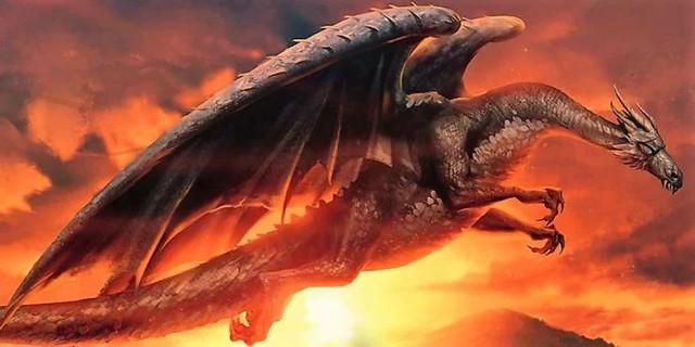 Giống cái mạnh hơn giống đực và 10 thông tin thú vị liên quan tới loài rồng trong loạt Harry Potter - Ảnh 4.