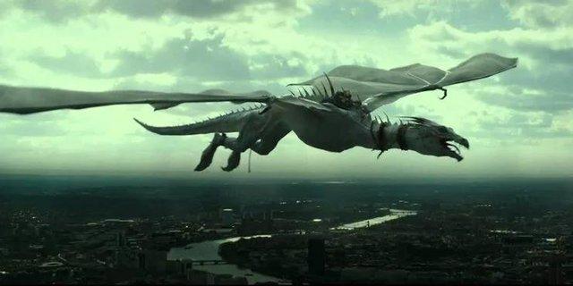 Giống cái mạnh hơn giống đực và 10 thông tin thú vị liên quan tới loài rồng trong loạt Harry Potter - Ảnh 5.