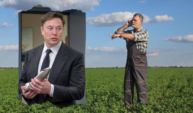 Hơn một nửa số người Úc nghĩ rằng Elon Musk đã phát minh ra Bitcoin - Ảnh 1.