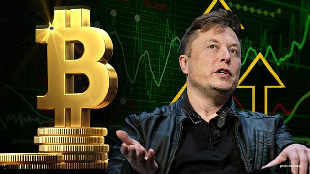 Hơn một nửa số người Úc nghĩ rằng Elon Musk đã phát minh ra Bitcoin - Ảnh 2.