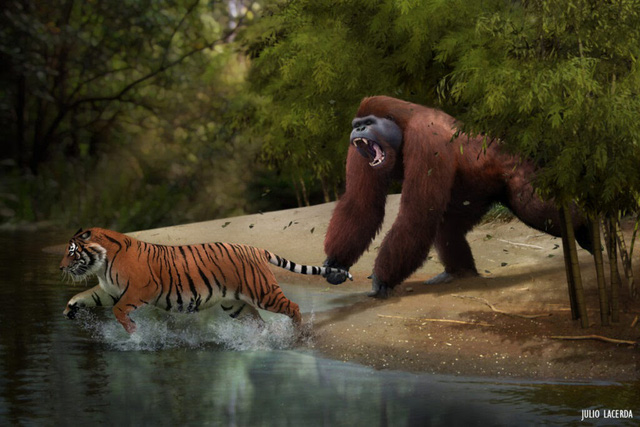 Top 10 loài động vật khủng khiếp nhất mà người tiền sử từng phải đối mặt - Ảnh 5.