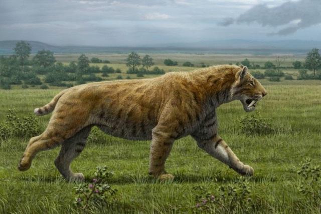 Top 10 loài động vật khủng khiếp nhất mà người tiền sử từng phải đối mặt - Ảnh 9.