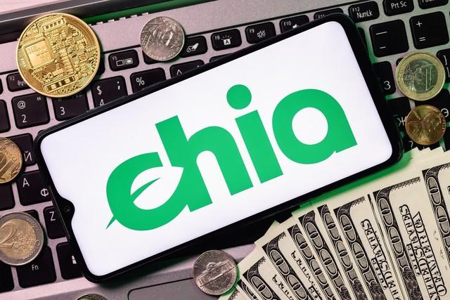 Thử nghiệm đào tiền ảo Chia bằng ổ cứng, liệu có dễ kiếm hàng chục triệu 1 tháng? - Ảnh 1.