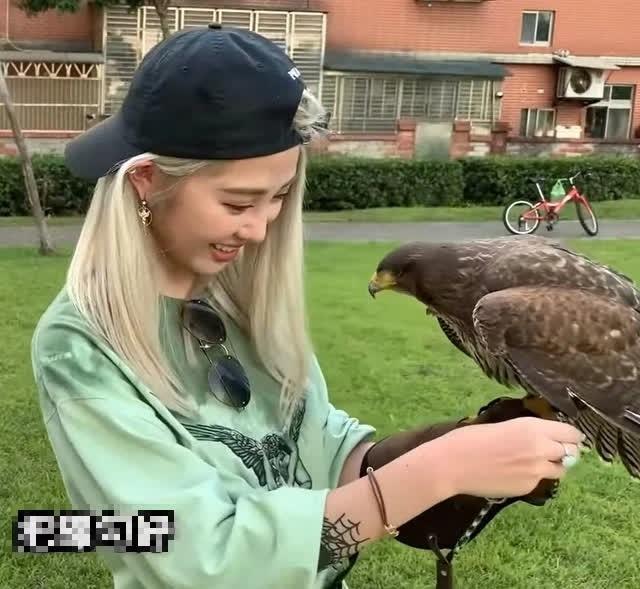 CĐM phát sốt vì Thần Điêu Đại Hiệp bản nữ, đã quyến rũ lại còn có kỹ năng huấn luyện chim cực đỉnh - Ảnh 4.