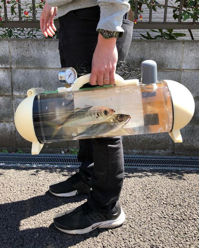 Người Nhật phát minh ra bể di động để dắt cá đi chơi, tưởng vô dụng nhưng lại cháy hàng mới lạ - Ảnh 1.