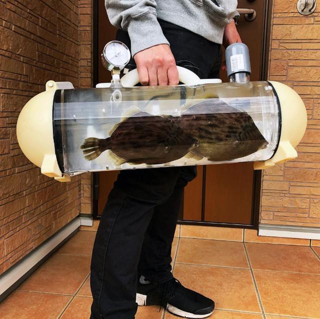 Người Nhật phát minh ra bể di động để dắt cá đi chơi, tưởng vô dụng nhưng lại cháy hàng mới lạ - Ảnh 4.